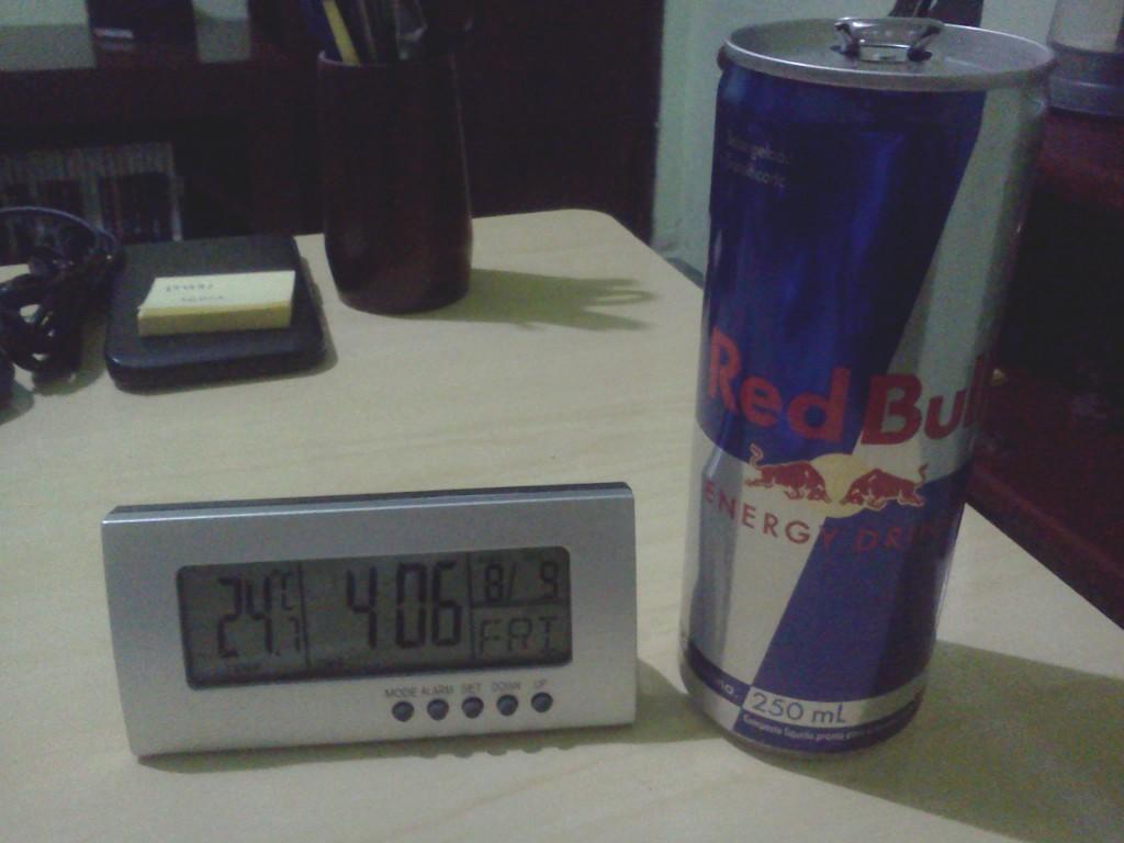 Foto 08: Red Bull te dá asas.